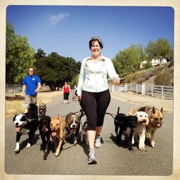 Dog Trainer South Bay Ca